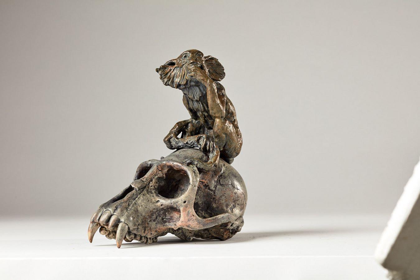 Kasper sculpteur _Ouistiti sur crâne de singe_ bronze